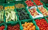 تولید نیم میلیون تن محصولات کشاورزی در شهرستان سراب/ ۱۵۰ روز یخبندان در شهرستان سراب