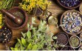 ۴۵۰ گونه گیاهان دارویی در آذربایجان شرقی/ تولید ۱۸ هزار تن انواع گیاهان دارویی در استان